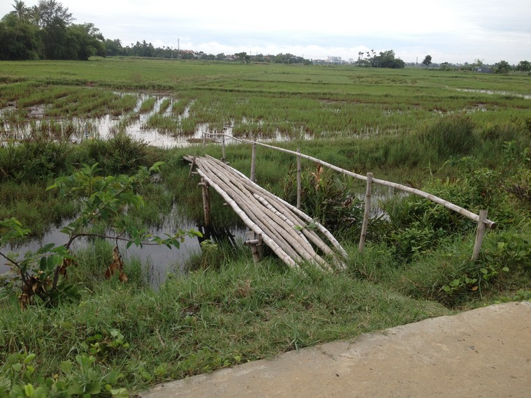 Small bamboo bridge to the field (Tra Que Vegetable Village, Hoi An, Vietnam)