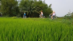 Hoi An Countryside - Cam Kim Island