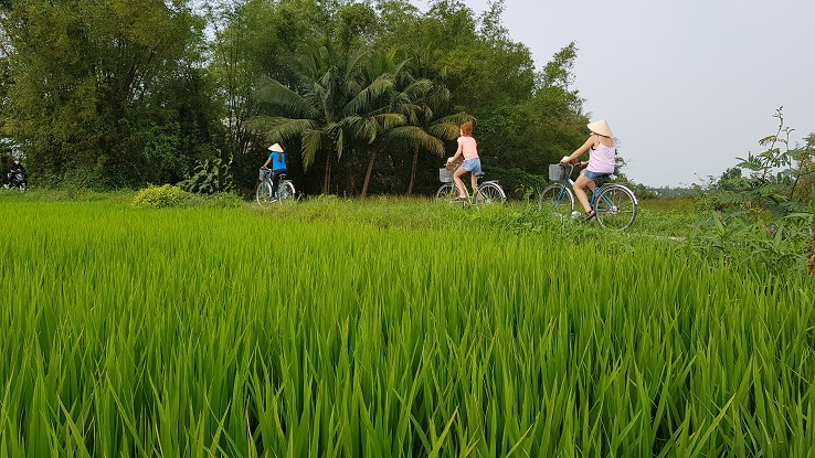 Explore Hoi An Countryside