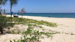 Hidden Beaches in Hoi An